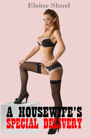 A Housewife's Special Delivery by Elaine Shuel