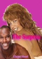 The Surprise by Elaine Shuel